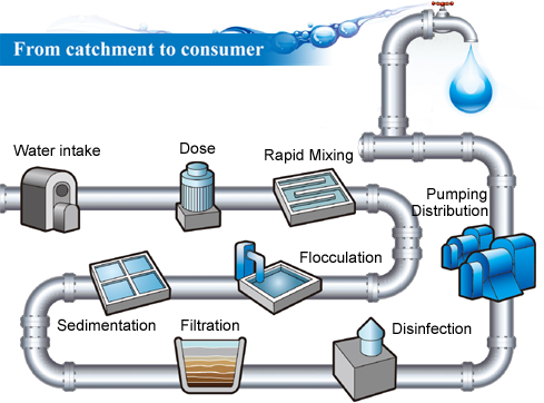 Do Chemical Water Purification Methods Really Work